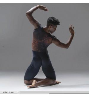 Mono de ballet de caballero
