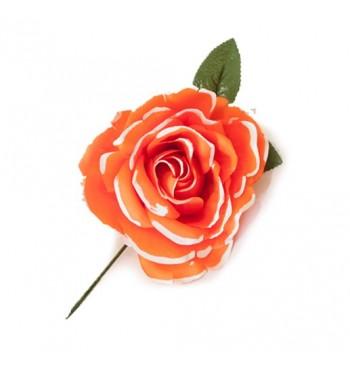 RD03 PINT - Rosa grande para pelo Pintada