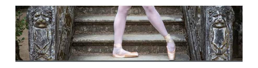 Zapatillas de Ballet - Puntas y media punta Ballet - Comprar a precios en oferta